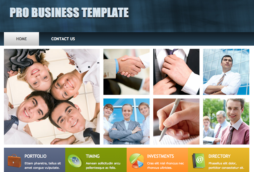 Pro Business Template